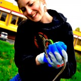 nyberg-volunteer-snake-1