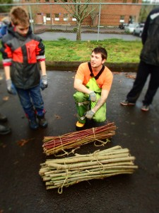 City of Tualatin employee with red osier dogwood stakes (red) and willow stakes (brown).