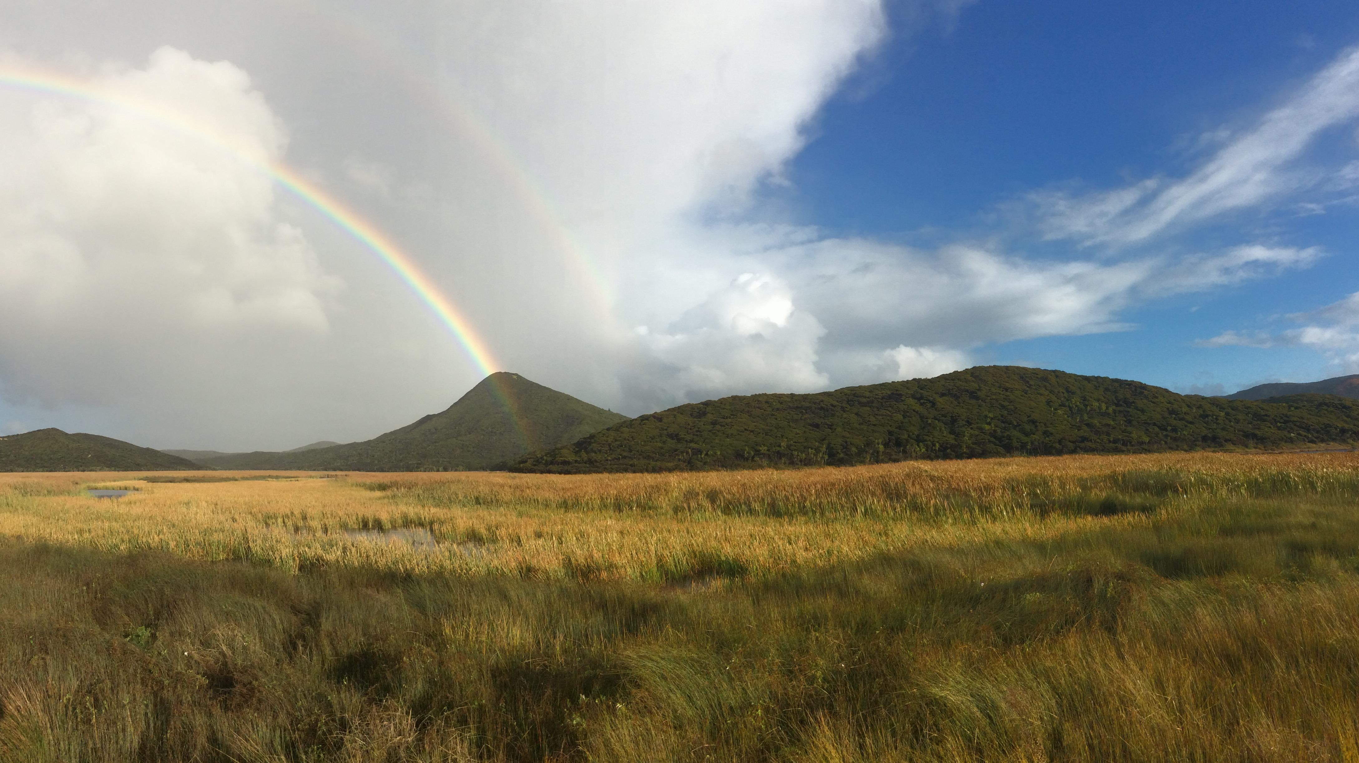Rainbow over Ponaki Swamp, Lisa Forester
