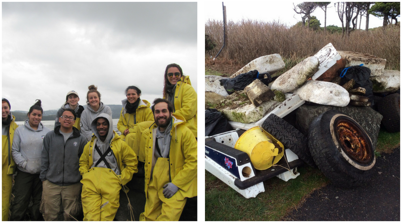 Alsea Bay Clean-up