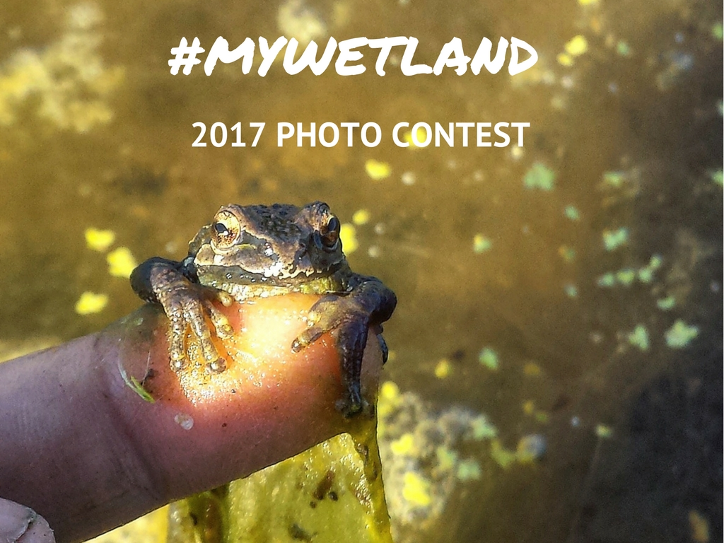 #mywetland Photo Contest