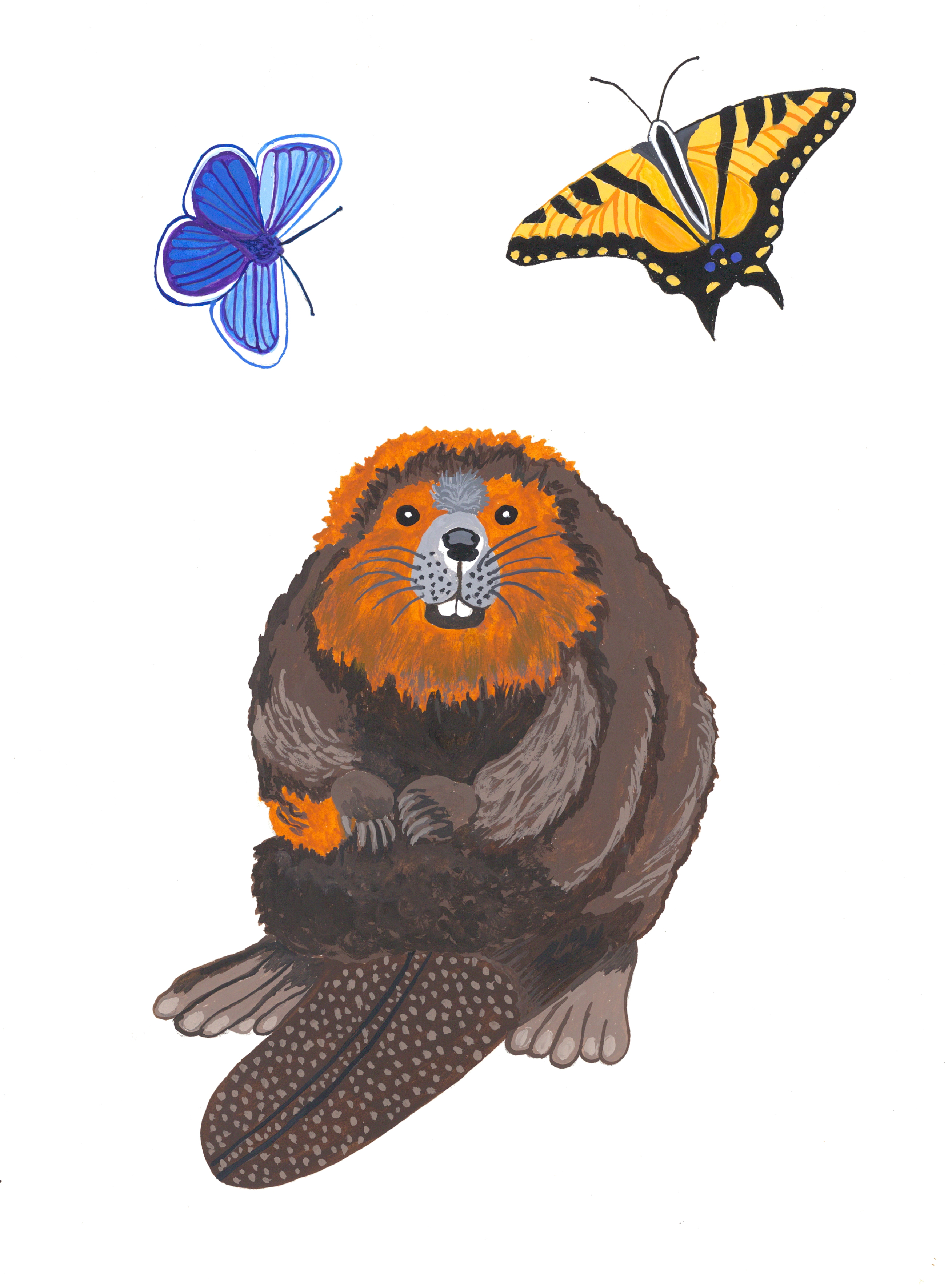 Beaver and Butterflies, Margo Greeve