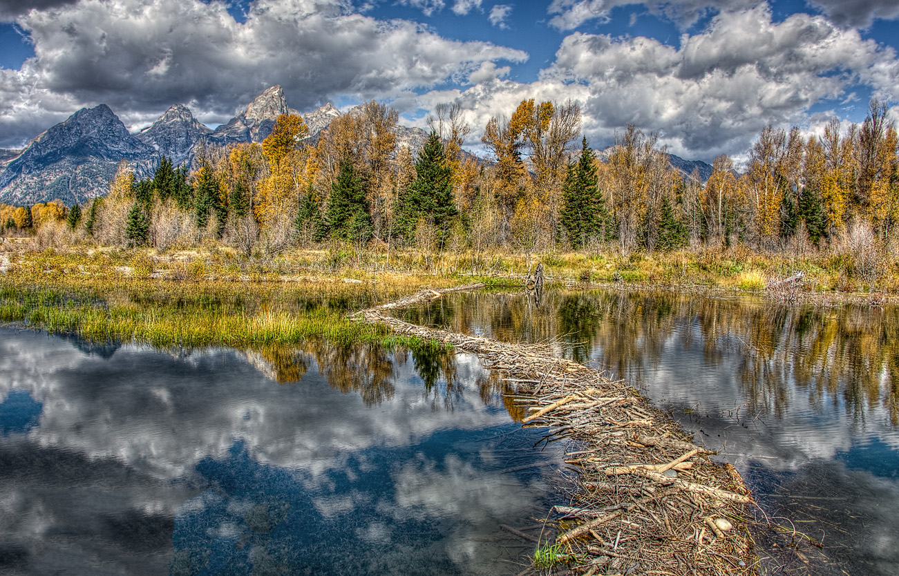 Beaver Dam and Teton Mts.