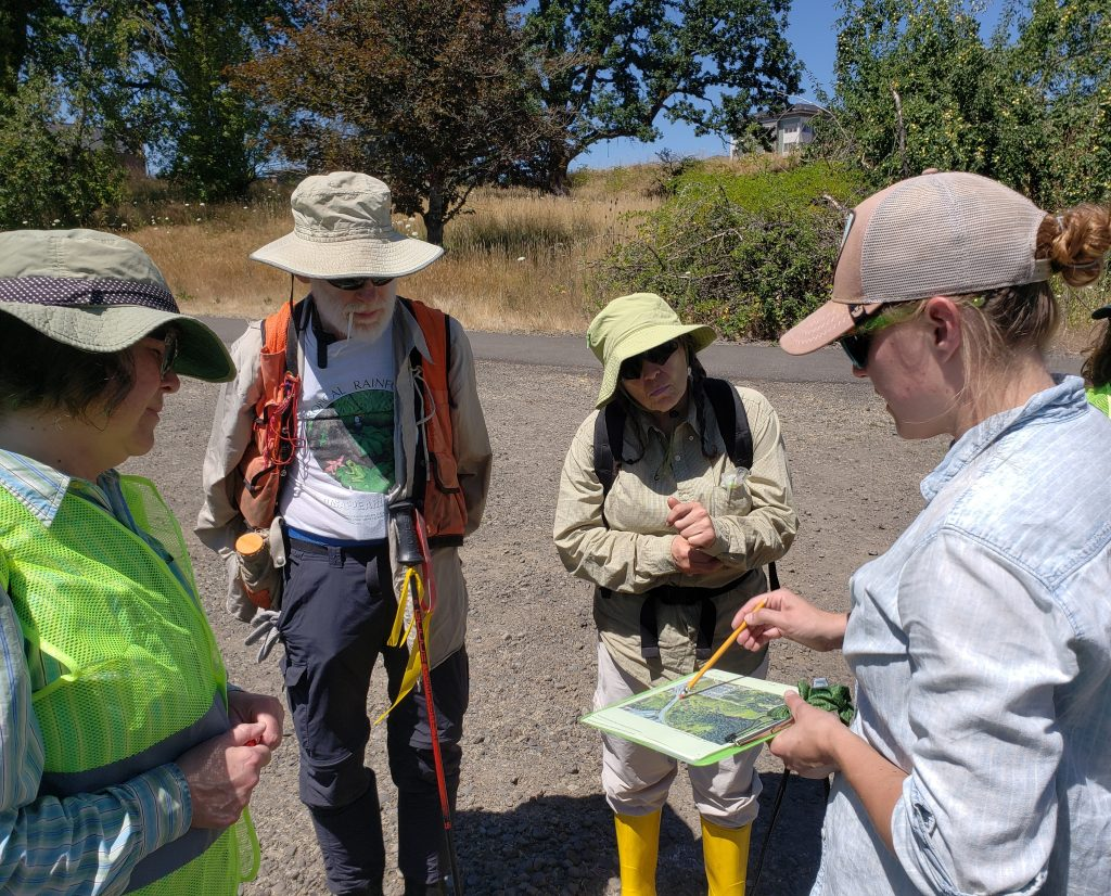 Four volunteers met at our Cedar Mill preserve in Beaverton to walk the wetland in search of beaver dams. Megan Garvey explain the process, route and how to record data.