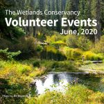 June Volunteer Events